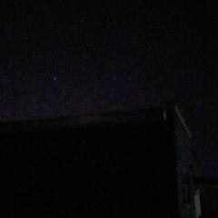 天体観測/冬/風景 じぶんぎ流星群を見て居たよ! もちろん携…