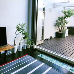 開放感/癒しの空間/オープン窓/ガラスブロック/ウッドデッキ/カフェ/...