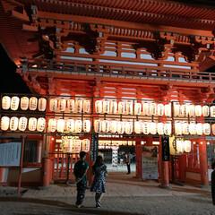 夜/京都/下鴨神社/住まい/イベント 夜の京都 下鴨神社の御手洗 めっちゃ冷た…
