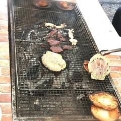 ビール/昼からビール/外遊び/焼き肉/BBQ/BBQの季節/... 温かい日☀ 焼き肉日和🍺  自粛BBQi…