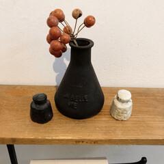漆喰壁/鉄/サンキライ/セリアのガラス瓶/アクリル絵の具でペイント/お気に入りグッズ/... トイレのフォトコンテストに応募。  我が…(1枚目)