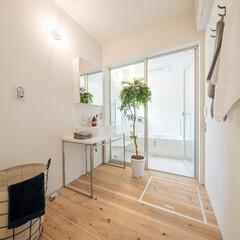 自然素材/無垢材/無垢杉の床/漆喰の壁/白い壁/W断熱の家/... . ~明るいナチュラルテイストで  清潔…