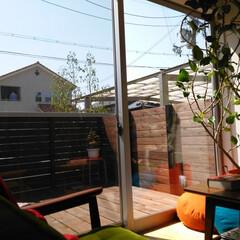 ウッドデッキ/無垢材/リビング/観葉植物/雑貨/おしゃれな家/... . ~お日様の光がたっぷり入る  ウッド…
