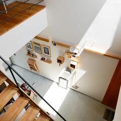 自然素材/無垢材/無垢杉の床/漆喰の壁/白い壁/W断熱の家/... . ~土間上部の大型窓からは  光が燦々…