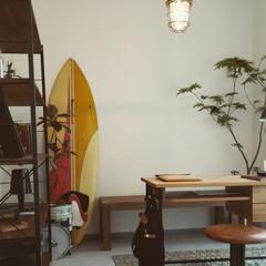 自然素材/無垢材/無垢杉の床/漆喰の壁/白い壁/W断熱/... . ~自分好みの雑貨や家具を配置して  …