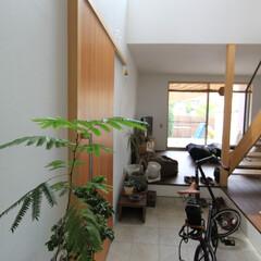 自然素材/無垢材/無垢杉の床/漆喰の壁/白い壁/W断熱の家/... . ~大きなFIX窓から土間に  たくさ…