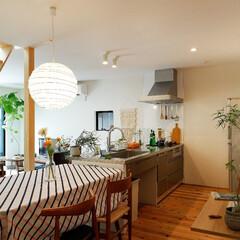 キッチン/ダイニング/ダイニングテーブル/テーブルクロス/照明/観葉植物/... . ~ダイニングをキッチンに隣接して  …