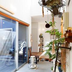 自然素材/無垢材/無垢杉の床/漆喰の壁/白い壁/W断熱の家/... . ~観葉植物やシンプル雑貨を  おしゃ…