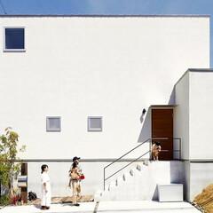 自然素材/無垢材無垢杉の床/漆喰の壁/白い壁/W断熱の家/土間のある家/... 東京都東村山市の工務店 《土間のあるおし…