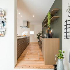 自然素材/無垢材/無垢杉の床/漆喰の壁/白い壁/W断熱の家/... . ~リビングからも土間からも  出入り…