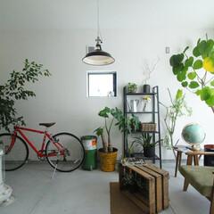 ds/D´S STYLE/土間のある暮らし/四角の家/かっこいい/自然素材/... 家をおしゃれに住みこなそう。 そう、着こ…