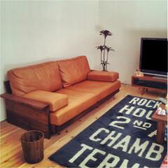 自然素材/無垢材/無垢杉の床/漆喰の壁/白い壁/W断熱の家/... . ~革のソファーや雑貨で  ビンテージ…