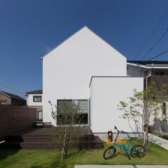 自然素材/無垢材/真っ白な四角の家/ハコの家/D'S STYLE/外観/... . ~緑に映える真っ白なハコの家  ウッ…