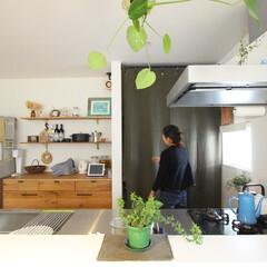 ds/D´S STYLE/アメリカンスタイル/カリフォルニアスタイル/サーフスタイル/ブルックリンスタイル/... 家をおしゃれに住みこなそう。 そう、着こ…