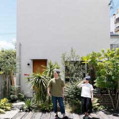 自然素材/無垢材/無垢杉の床/漆喰の壁/白い壁/土間のある家/... 東京都東村山市の工務店 《土間のあるおし…