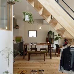 自然素材/無垢材/無垢杉の床/漆喰の壁/白い壁/外断熱/... . ~土間スペースから繋がる  ナチュラ…