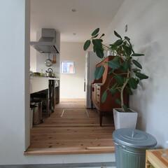 ds/D´S STYLE/土間のある暮らし/四角の家/かっこいい/おしゃれ/... 家をおしゃれに住みこなそう。 そう、着こ…