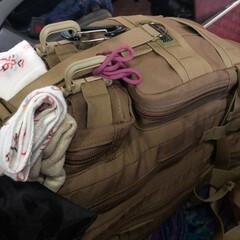 ジジイの徘徊/小樽/一人旅 おはようございます😃本日より二泊三日の一…