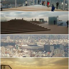 新国立競技場/お出掛け/渋谷 渋谷SKY 高かった~ 新国立競技場が良…