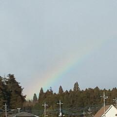 風景/強風/にじ かなりの強風で山から雪が飛んでくる中 虹…