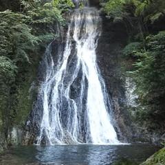 ドライブ/滝/お出かけ 高千穂の天岩戸神社近くの常光寺の滝に行っ…(1枚目)