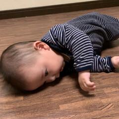 初めての/頑張れ/寝返り/赤ちゃん/フォロー大歓迎/うちの子ベストショット 昨日、私がお風呂から上がると主人が何やら…