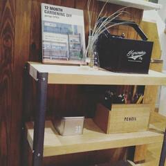 リビング/インダストリアル/三角フラスコ/エアプランツ/カインズホーム/色鉛筆収納/... LアングルでDIYした棚です。購入すると…