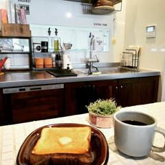 タイル/キッチンカウンターDIY/わたしのごはん/見せる収納/フェイクグリーン/調味料収納/... パン屋さんのパンに、美味しいバターぬった…