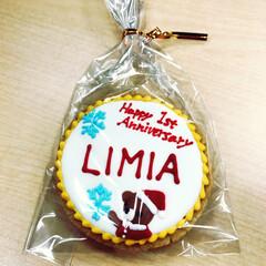 LIMIA/リミア 上岡さん、ありがとうございます!