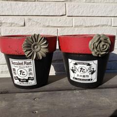 多肉植物/多肉/リメ鉢/リメイク鉢 多肉植物用のリメイク鉢作りました😊
