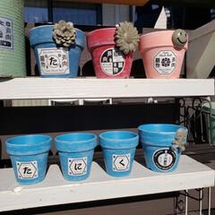 モルタル造形/リメイク鉢/お正月2020 今日のリメイク鉢たち(1枚目)