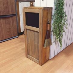 フェイクグリーン/ごみ箱DIY/ごみ箱/セリア/ダイソー キッチンカウンターの幅に合わせてごみ箱を…