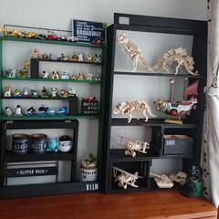 カラーボックスリメイク/端材/木製プラモデル/マイクロブロック/飾り棚DIY/DIY/... 100均の 『マイクロブロック』 『木製…