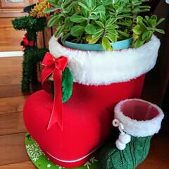 ミントグリーン/クリスマス2019/ダイソー/100均/住まい/暮らし/... もうすぐクリスマス🎅 お気に入りのブーツ…