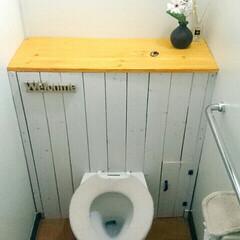 タンクレストイレ DIY/タンクレストイレ 寸法ミス、トラブルを繰り返しかなんとか形…
