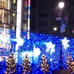 クリスマスツリー/風景 駒沢オリンピック公園中央広場の電飾と池袋…(3枚目)
