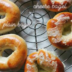 ベーグル/パン/天然酵母パン/フォロー大歓迎/グルメ/フード/... 久しぶりにベーグル焼きました。  りんご…