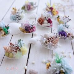 涼しげなインテリア/手作り/マグネット/貝殻/夏/フォロー大歓迎/... 毎日暑いですね☀️😄 貝殻にお花を咲かせ…
