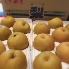 梨/九州/秋 大分県産。大きなくす九重梨届きました🍐🍐…