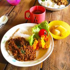 ランチ/昼食/古材/テーブル/キーマカレー/ドライカレー/... ■ OHESO café LUNCH M…
