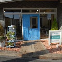 Hair Labo nico/美容室/橋本/エイジング/扉/青い扉/... エイジングされた青い扉とお庭のある美容室…