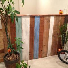 湘南シーズン株式会社/平塚/湘南/西湘/オフィスリノベーション/不動産会社/... 古材を使い腰壁を作りました。