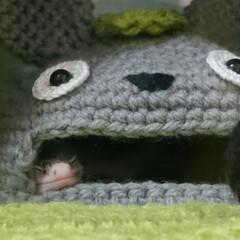 爬虫類のいる暮らし/レオパードゲッコー/ヒョウモントカゲモドキ/ダイソー/セリア/100均/... 天使の寝顔👼  私の爬虫類のガチャなどを…(1枚目)