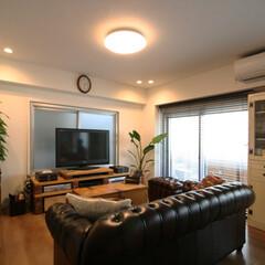 ミッドセンチュリー/観葉植物/男の隠れ家 TVボードもレンガと木材を組み合わせて作…