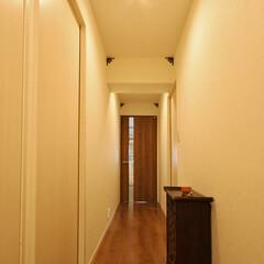 シンプル/廊下 白を基調にシンプルにまとめた廊下