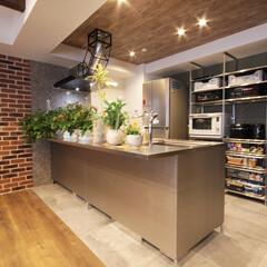 ステンレスキッチン/観葉植物 スタイリッシュなステンレスキッチンには沢…