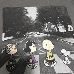 ビンテージTシャツ/ビートルズ/ファッション