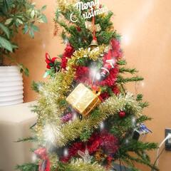 キラキラ/先生プレゼントちょうだい/英会話教室/クリスマスツリー/クリスマス うちにはクリスマスツリーが無いので、英会…