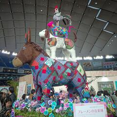 東京国際キルトフェスティバル 仕事が溜まってて忙しいところ、奥さんに誘…