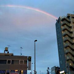 雨上がり/虹 昨日の夕方、仕事帰りの奥さんから🌈虹の写…